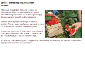 Sample from Integrating Standards Course #4