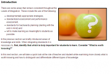 Integrating Standards in Teaching