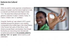 Sample from Teaching English Language Learners Course #4