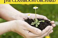 The Classroom Orchard